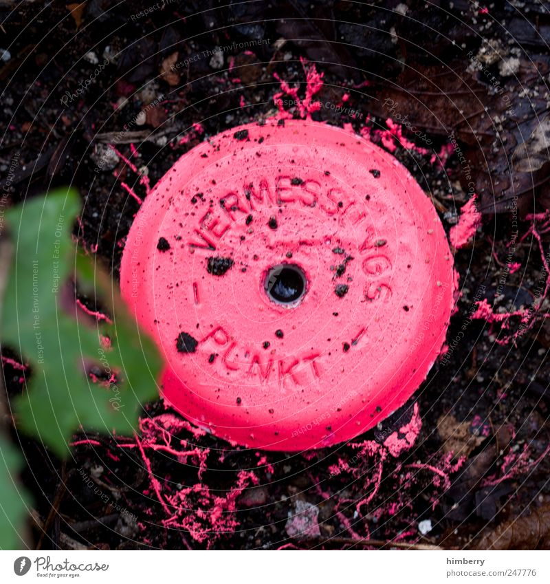 1400 Farbe Farbstoff rosa dreckig planen Coolness Baustelle einzigartig Beruf Punkt Dienstleistungsgewerbe Handwerk trendy Informationstechnologie Fortschritt Grundstück