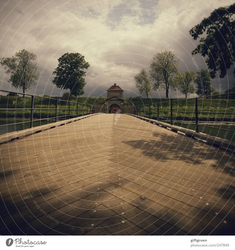am holzweg Himmel Baum Pflanze Wolken Blatt Landschaft Wege & Pfade Park Linie gehen Brücke Perspektive Bauwerk Verkehrswege Geländer Holzbrett