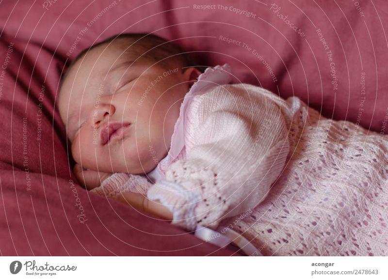 Schönes Neugeborenes schläft friedlich ein. Lifestyle Mensch feminin Kind Baby Mädchen Körper 1 0-12 Monate schlafen elegant Gefühle Geborgenheit Liebe träumen