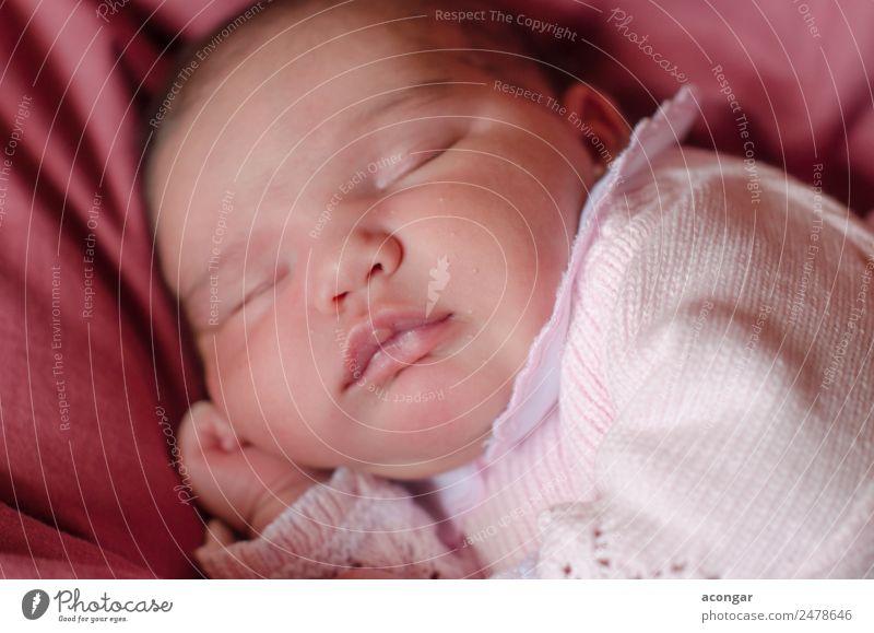 Schönes Neugeborenes schläft friedlich ein. Lifestyle schön Gesicht Mensch feminin Kind Baby Mädchen Kindheit 1 0-12 Monate schlafen Gefühle Sicherheit Schutz