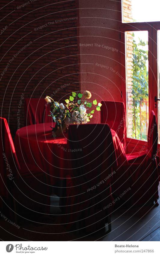 Purpurner Plüsch-Platz rot Sommer Haus Ferne Gefühle Glück Stimmung Feste & Feiern außergewöhnlich Romantik Wunsch fantastisch Reichtum Blumenstrauß Leidenschaft Geborgenheit