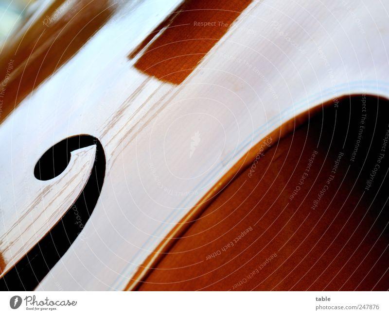 Kontra Lifestyle elegant Stil harmonisch Hausmusik Musik Konzert Musiker Kontrabass Holz Zeichen Ornament ästhetisch braun schwarz Gefühle Design Inspiration