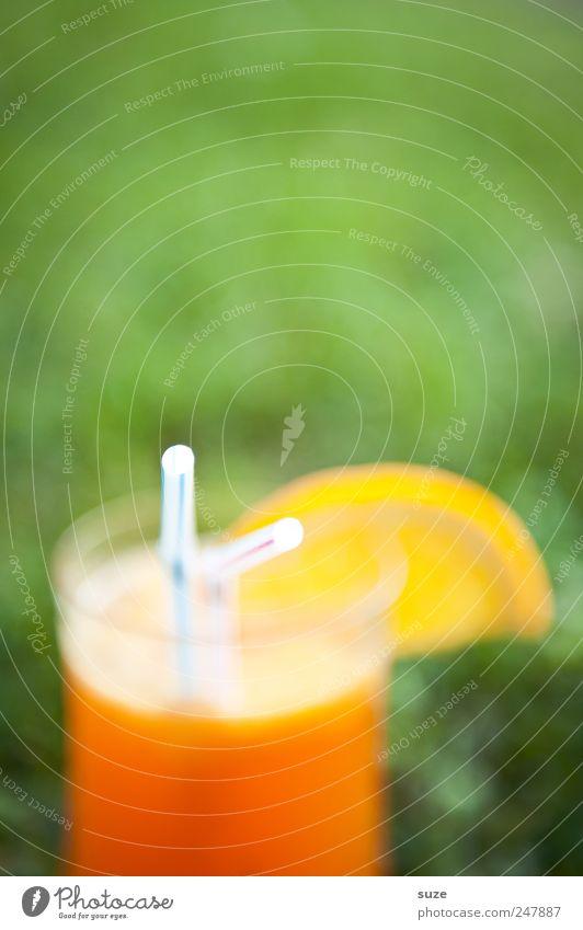 Cocktail Orange Getränk Erfrischungsgetränk Longdrink Trinkhalm Sommer Wiese leuchten lecker süß grün Orangenscheibe Sommerdrink sommerlich fruchtig Farbfoto