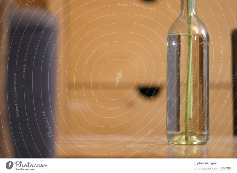 Bottle Vase Blumenvase beige Weinflasche Häusliches Leben Glas Flasche