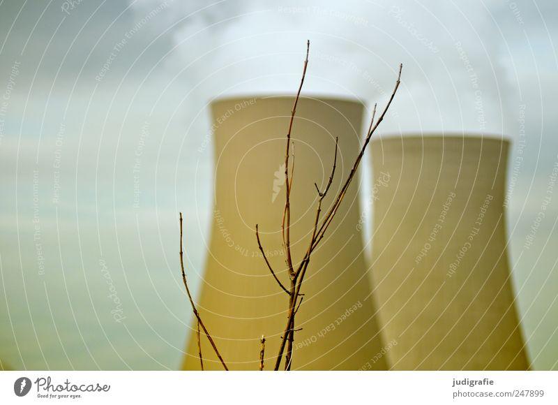 AKW Energiewirtschaft Kernkraftwerk Umwelt Pflanze Himmel Sträucher Industrieanlage Fabrik Schornstein kahl Abgas Turm Farbfoto Außenaufnahme Menschenleer Tag