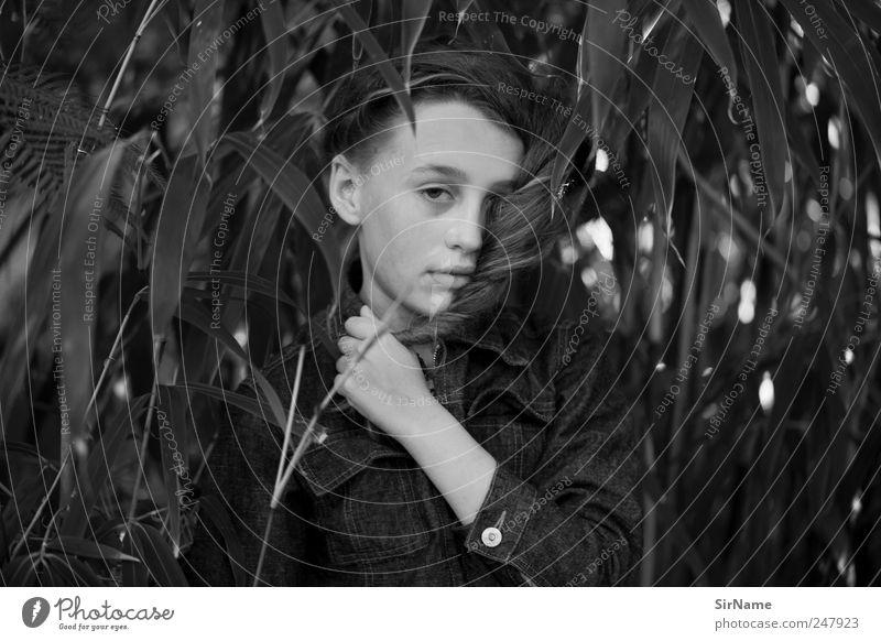170 [in der welt] Kind Mensch Natur Jugendliche schön Blatt Leben Freiheit Junge Haare & Frisuren Stil Park Kindheit Beginn wild