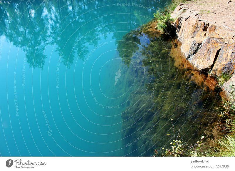 Das Meer #2 Zufriedenheit Erholung Ferien & Urlaub & Reisen Sommer Wetter Schönes Wetter Wald Küste See blau Farbfoto Außenaufnahme Menschenleer