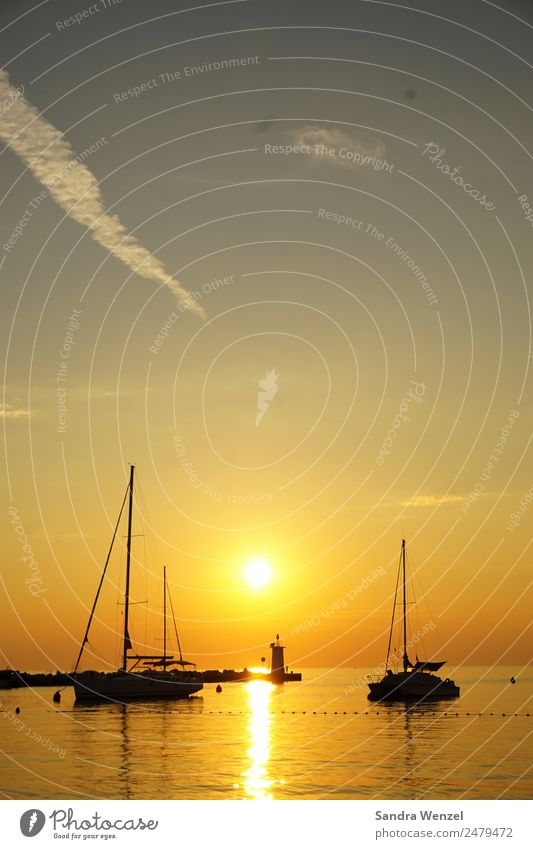 Novigrad, Istrien Schwimmen & Baden Ferien & Urlaub & Reisen Abenteuer Ferne Freiheit Sommer Sommerurlaub Sonne Strand Wolkenloser Himmel Horizont Sonnenaufgang