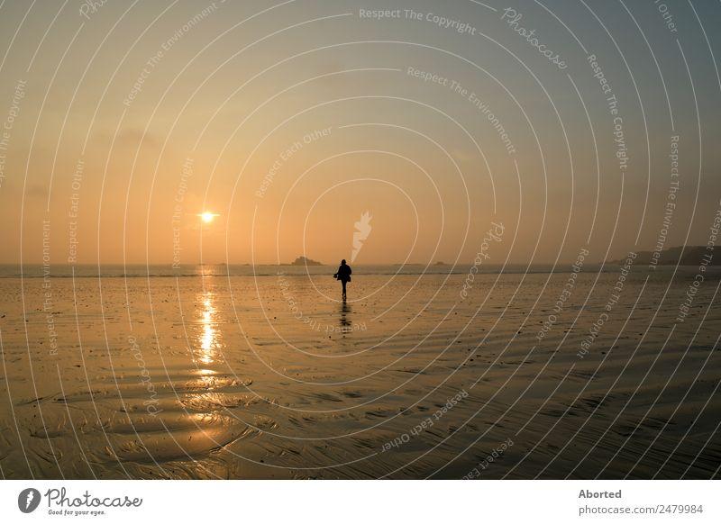 Life on Mars Landschaft Wasser Horizont Sonnenaufgang Sonnenuntergang Sommer Schönes Wetter Meer Sand Respekt ruhig Farbfoto Außenaufnahme Dämmerung