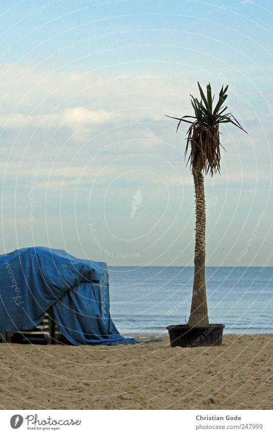 Feierabend Himmel blau Sommer Ferien & Urlaub & Reisen Strand Meer ruhig Ferne Erholung Freiheit Küste Wellen Zufriedenheit Ausflug Tourismus Insel