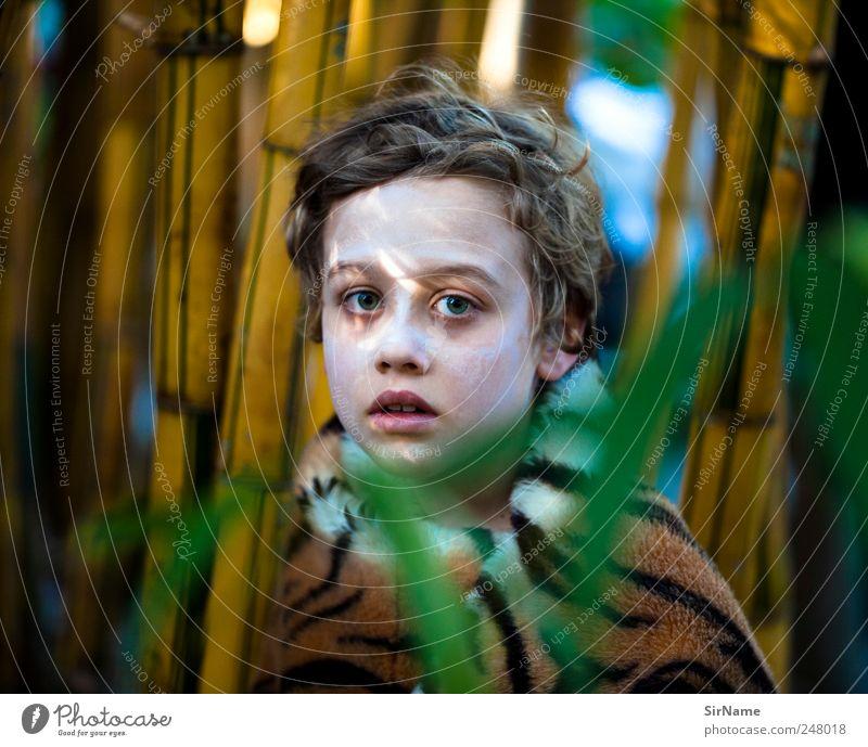 171 [in der welt] Mensch Kind Natur schön Baum Pflanze Ferien & Urlaub & Reisen Blatt Leben Spielen Junge Garten Park Kindheit wild