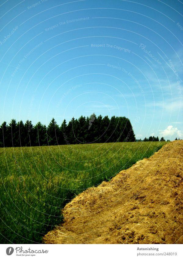 Astonishing landscape Umwelt Natur Landschaft Pflanze Luft Himmel Wolken Sommer Wetter Schönes Wetter Baum Gras Wiese Wald blau braun gelb grün Misthaufen Linie