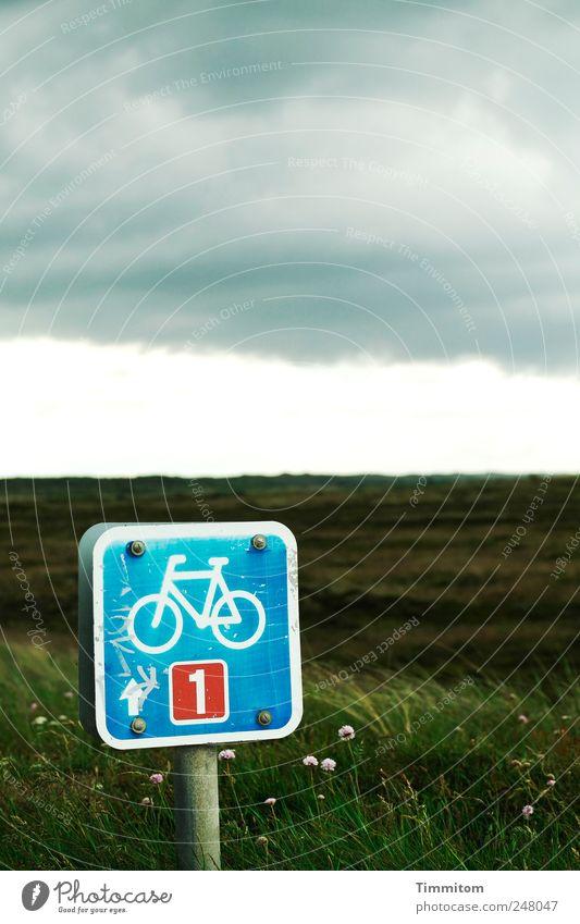 Die Tagesaufgabe Natur blau Ferien & Urlaub & Reisen Sommer Wolken Landschaft Gras Metall Freizeit & Hobby Beginn Aktion Hinweisschild Zeichen Nordsee schlechtes Wetter Dänemark