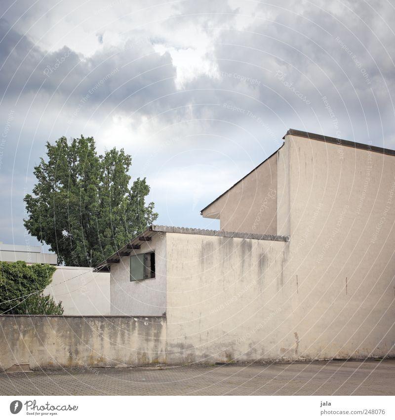 fassade Himmel Wolken Pflanze Baum Grünpflanze Haus Platz Mauer Wand Fassade Fenster trist Farbfoto Außenaufnahme Menschenleer Tag