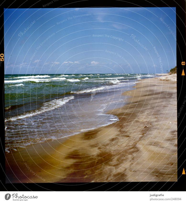 Weststrand Himmel Natur Wasser kalt Landschaft Umwelt Sand Wellen Klima wild Ostsee Darß Gischt Weststrand