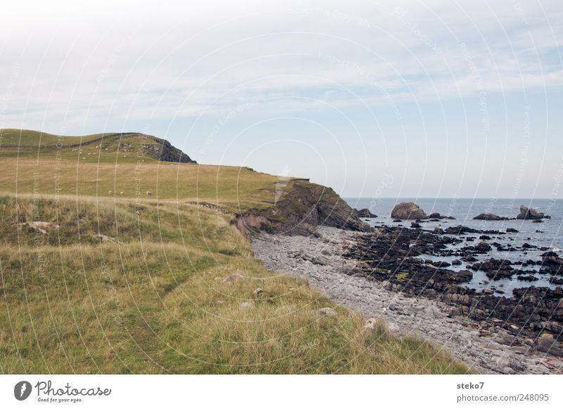 schottische Badelandschaft grün blau Sommer Strand Meer Wiese Küste Felsen Hügel Bucht Schönes Wetter Schottland