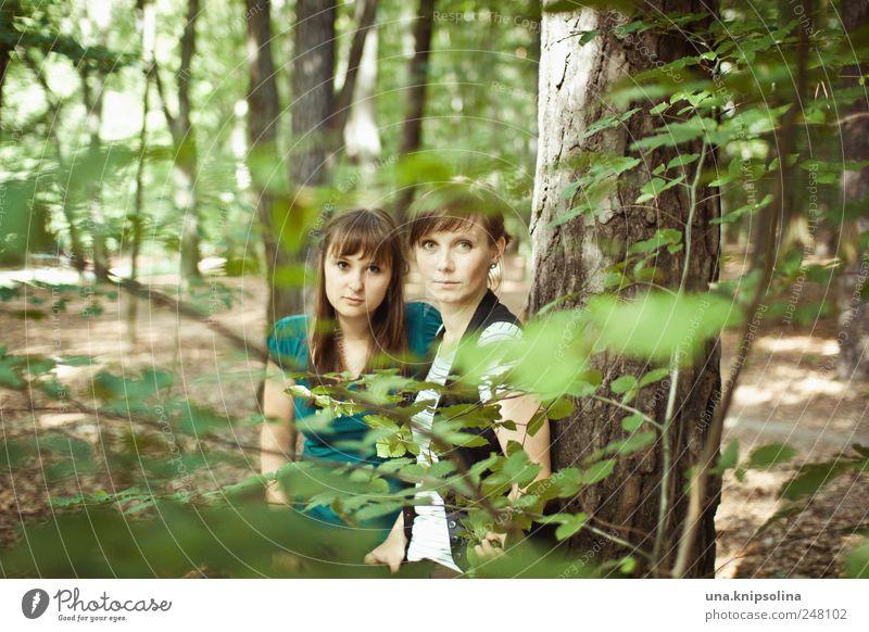 zwei fräulein steh'n im walde... Frau Mensch Natur Jugendliche grün Baum Pflanze Blatt Wald feminin Gefühle Umwelt Erwachsene Freundschaft Zusammensein