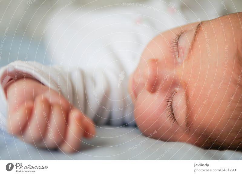 Neugeborenes Babymädchen schläft zu Hause auf blauem Laken Glück schön Gesicht Leben Kind Mensch Mädchen Frau Erwachsene Kindheit 1 0-12 Monate schlafen klein