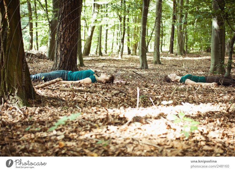 waldyoga Mensch Frau Erwachsene Freundschaft Jugendliche 2 Umwelt Natur Schönes Wetter Wald beobachten Erholung liegen träumen verrückt Gefühle Stimmung