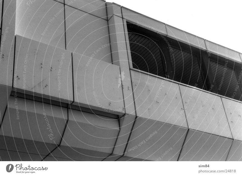 Beutelratte Gebäude Fenster Architektur Schwarzweißfoto modern