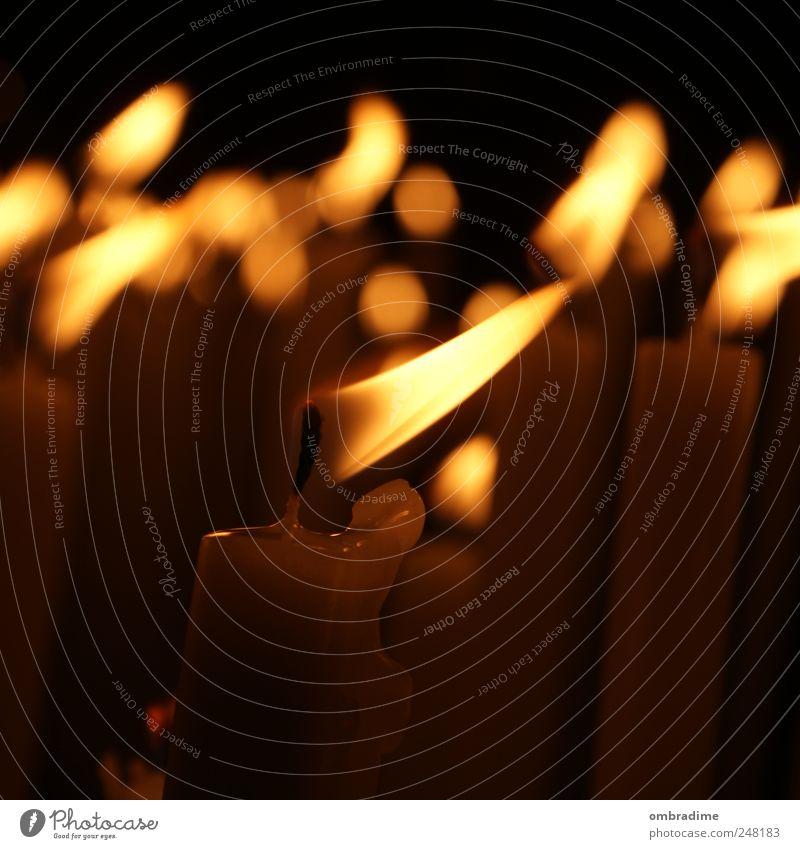Candlelight I gelb Wärme Stimmung Wind gold Feuer natürlich Kirche Kerze nah heiß Dom erinnern Kerzenschein