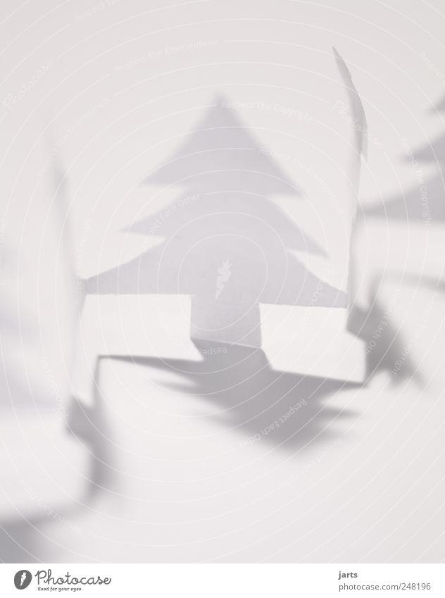 weiße weihnacht weiß Winter Fröhlichkeit Papier Hoffnung Weihnachtsbaum Tanne Glaube Vorfreude Weihnachtsdekoration