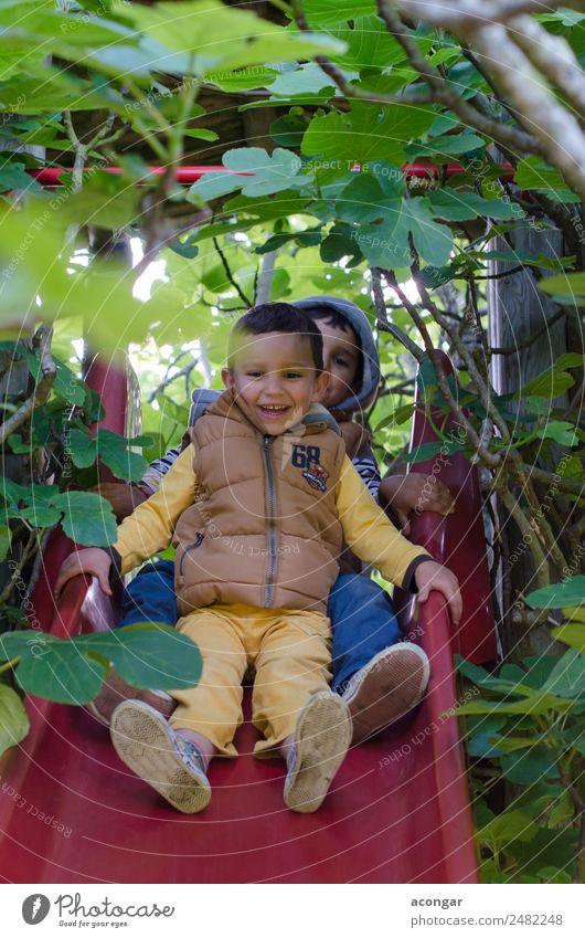 Kind Natur Baum Freude Liebe lustig Glück Junge Spielen Zusammensein Freundschaft Fröhlichkeit genießen abwärts vertikal Spielplatz