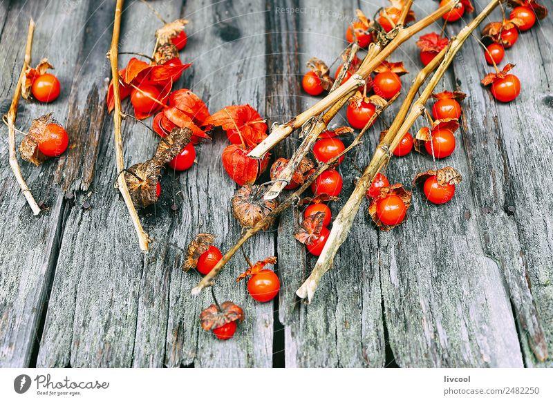 Kleine Tomaten über Holz Lebensmittel Gemüse Frucht Mittagessen Bioprodukte Vegetarische Ernährung Diät Ferien & Urlaub & Reisen Tourismus Ausflug Essen kaufen