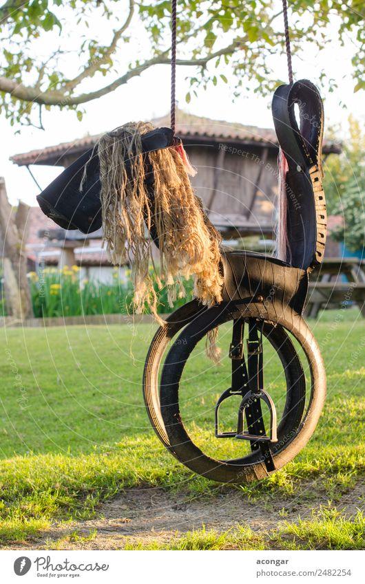 Natur lustig Spielen Kindheit Fröhlichkeit genießen Seil Pferd Reifen vertikal Spielplatz
