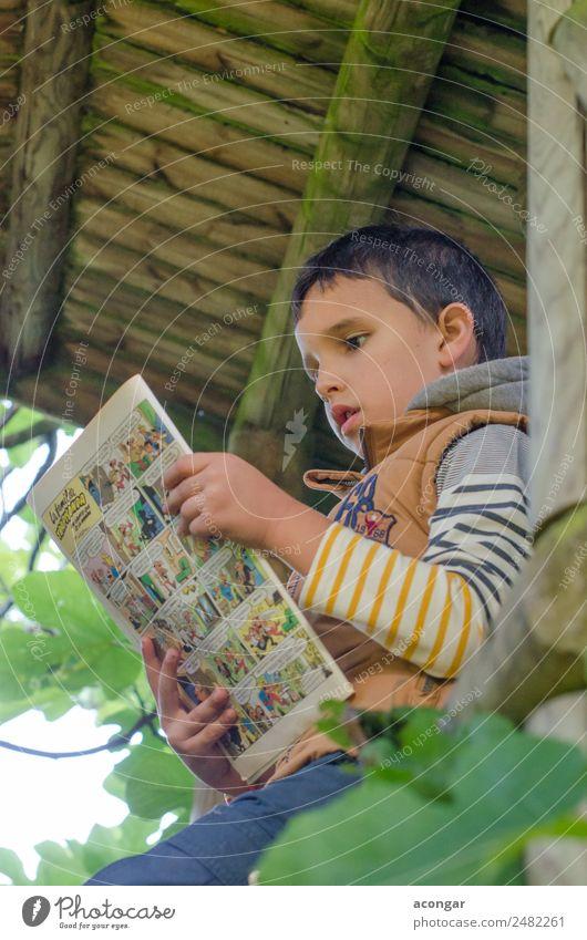 Junge liest einen Comic im Holzhaus des Baumes. lesen Haus Mensch maskulin Kind Kindheit 1 3-8 Jahre Buch Natur sitzen Weisheit Konzentration tadeln Feige