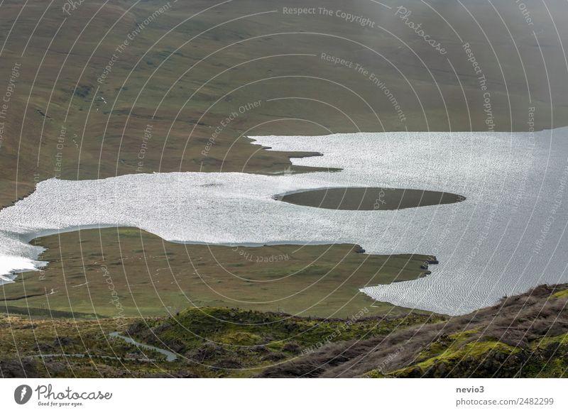 Kleine Insel in der Mitte eines Sees Landschaft schlechtes Wetter Gras Wiese Küste Bucht Meer grün Seeufer trist Ödland Einsamkeit Brachland Wege & Pfade Herbst
