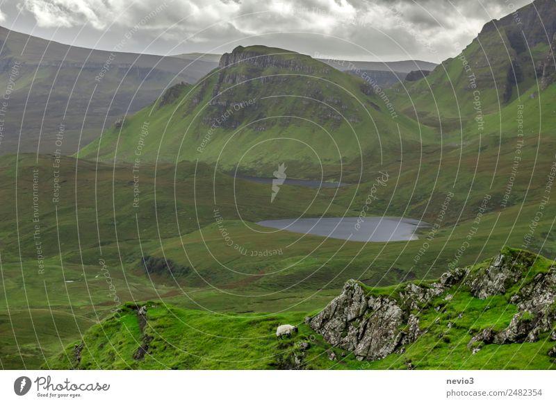 The Quiraing auf der Isle of Skye in Schottland Landschaft Gras Grünpflanze Wiese See entdecken Erholung Ferien & Urlaub & Reisen wandern grün Frühlingsgefühle