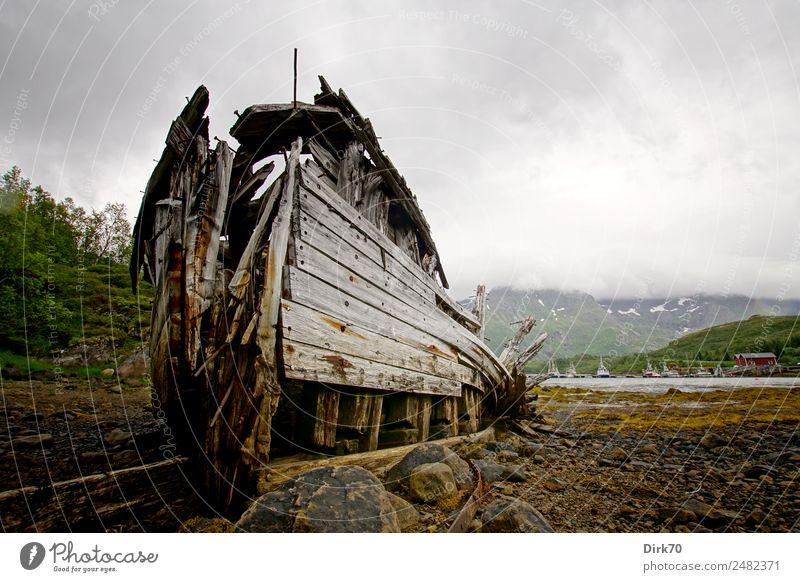 Schiffswrack auf den Lofoten Fischereiwirtschaft Natur Algen Berge u. Gebirge Küste Bucht Fjord Meer Polarmeer Insel Ebbe Norwegen Fischereihafen
