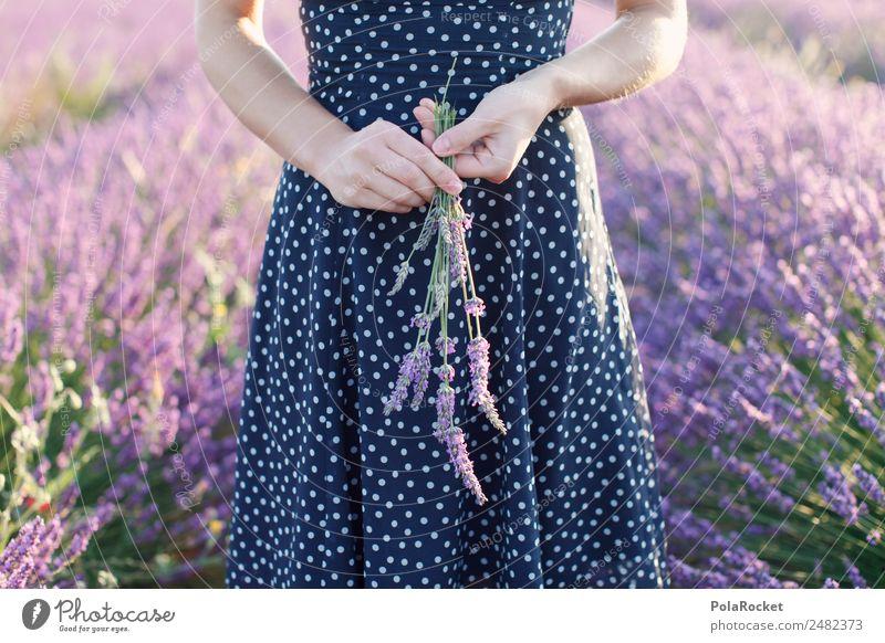 #A# Lavendel Mädchen Frau Natur Landschaft Blume Umwelt Wiese Garten Mode gehen Feld Spaziergang violett Kleid Blumenstrauß Frankreich
