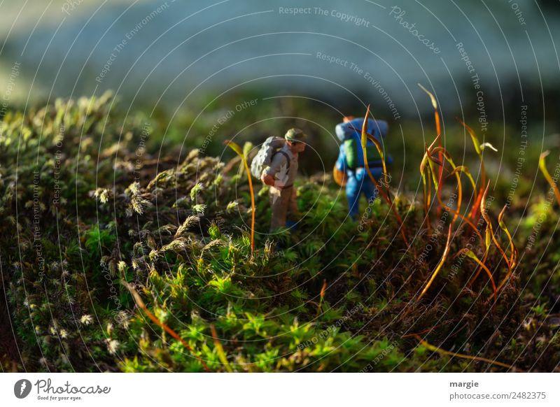 Isolation | ...verlaufen Freizeit & Hobby Mensch maskulin Mann Erwachsene 2 Umwelt Natur Landschaft Pflanze Tier Schönes Wetter Gras Moos Blatt Grünpflanze