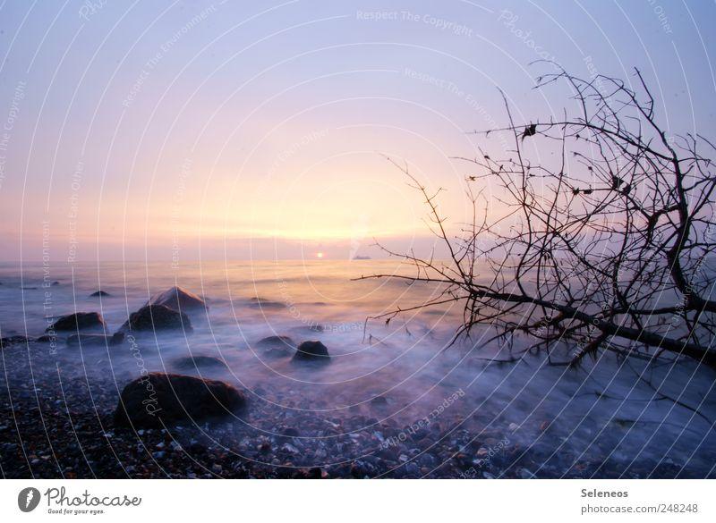 06:14 Himmel Natur Wasser Baum Sonne Strand Ferien & Urlaub & Reisen Meer Ferne Freiheit Landschaft Umwelt Küste Wetter Wellen Horizont