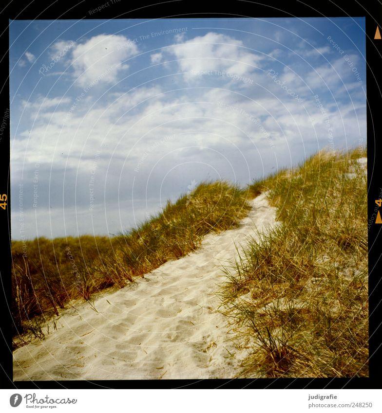 Weststrand Himmel Natur schön Strand Ferien & Urlaub & Reisen Wolken Erholung Gras Umwelt Sand Wege & Pfade Küste Stimmung Klima wild natürlich