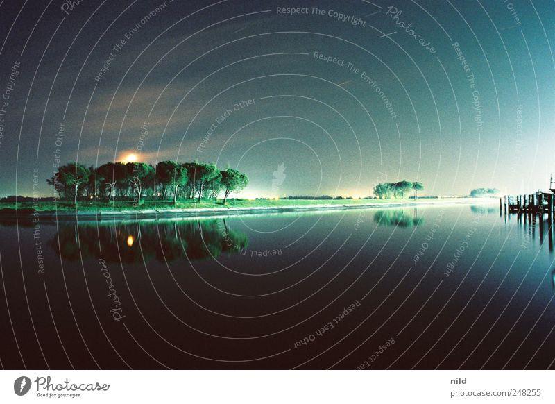 nachtaktiv Ferien & Urlaub & Reisen Ferne Freiheit Sommer Meer Umwelt Landschaft Himmel Wolkenloser Himmel Stern Horizont Mond Vollmond Schönes Wetter Wind Park