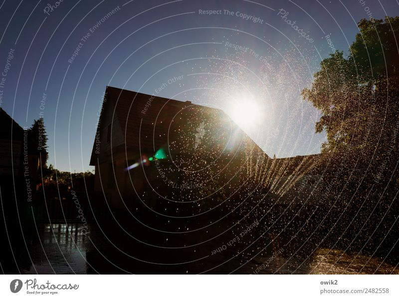 Sprinkleranlage Wasser Wassertropfen Wolkenloser Himmel Sonne Sommer Schönes Wetter Wärme Baum Dorf Skyline bevölkert Haus Einfamilienhaus glänzend leuchten