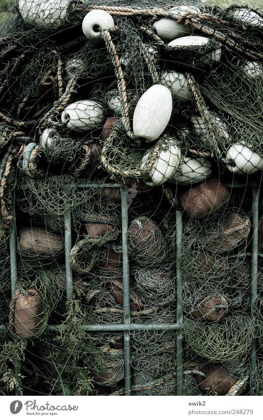 Fisches Alptraum weiß schwarz grau Metall Seil dünn Kunststoff Konzentration viele eng Werkzeug Zusammenhalt Kiste Fischereiwirtschaft Behälter u. Gefäße