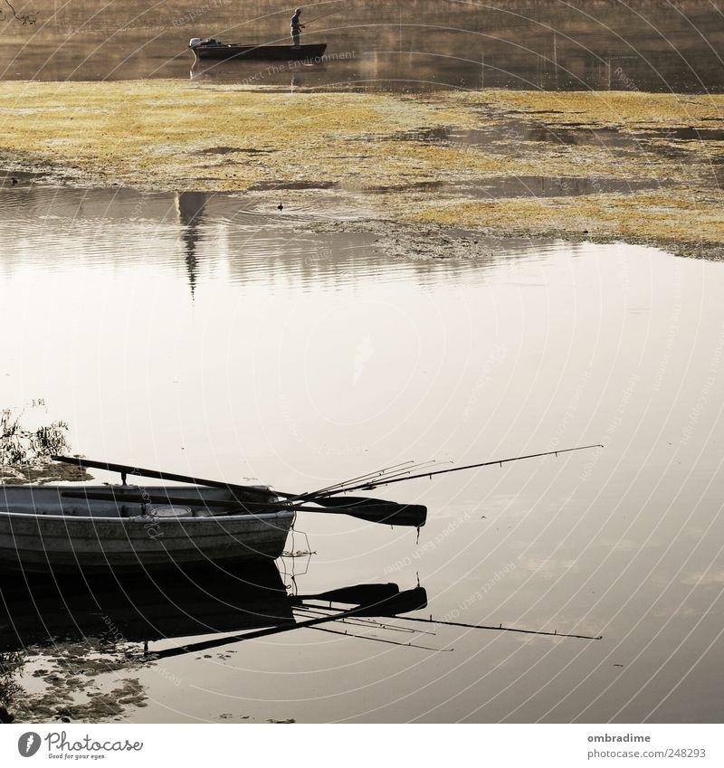 Herbsttage Natur Wasser ruhig Umwelt Landschaft Stimmung Wasserfahrzeug Nebel natürlich Fluss Schönes Wetter geduldig Angelrute Fischer Nebelschleier