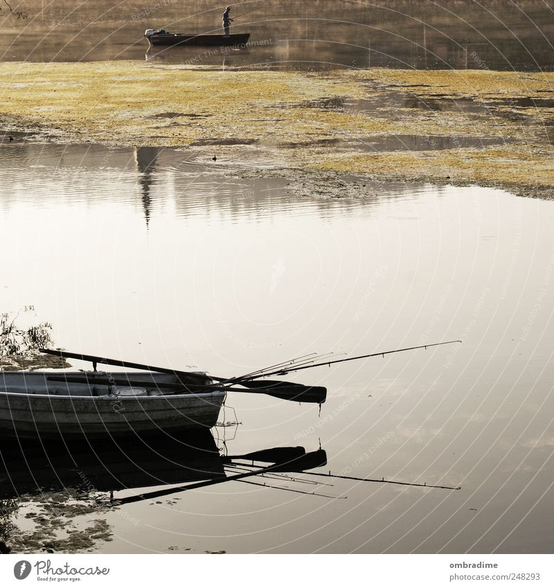 Herbsttage Umwelt Natur Landschaft Wasser Sonnenlicht Schönes Wetter Fluss natürlich Stimmung geduldig ruhig Wasserfahrzeug Fischer Nebelschleier Angelrute