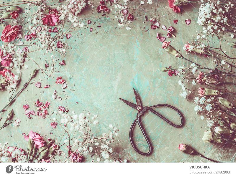 Gartenblumen Rahmen Hintergrund mit Schere Stil Design Schreibtisch Feste & Feiern Natur Pflanze Sommer Blume Blatt Blüte Dekoration & Verzierung Blumenstrauß