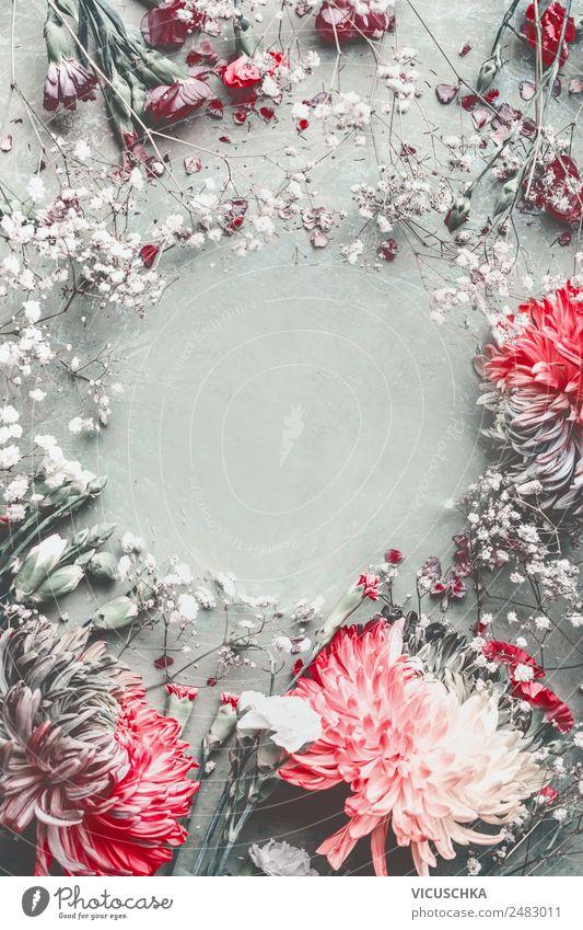 Sommerblumen Rahmen Hintergrund Design Schreibtisch Natur Pflanze Blume Blatt Blüte Dekoration & Verzierung Blumenstrauß trendy retro Stil Hintergrundbild
