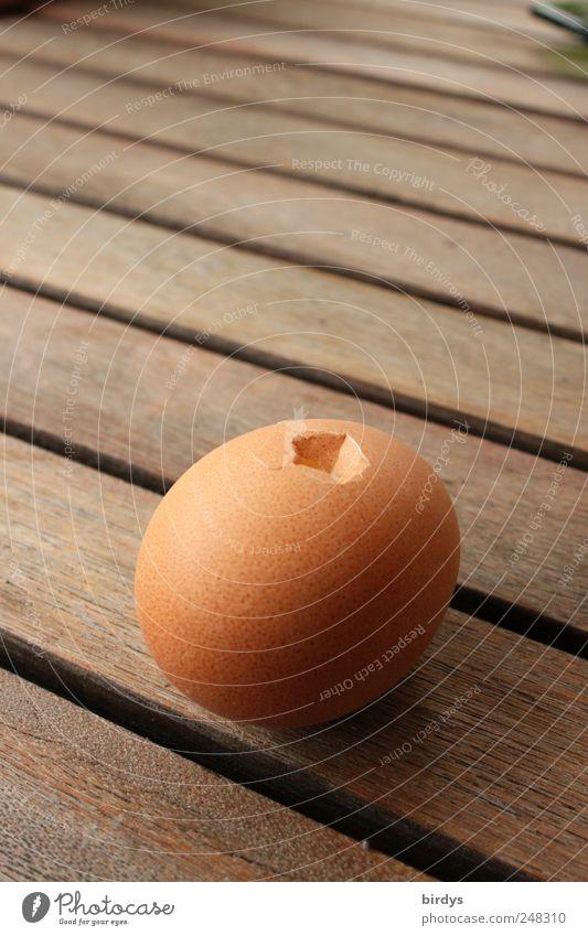 Angepickt Ei Ernährung liegen achtsam Zerstörung Eierschale Holztisch Loch beschädigt rohes Ei Fuge Fortpflanzung Hühnerei Foodfotografie Farbfoto Außenaufnahme