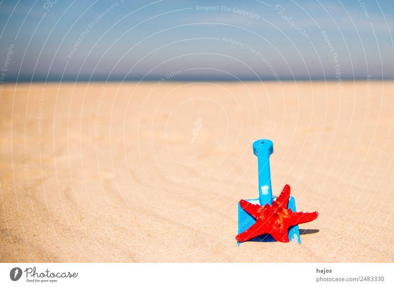 Schaufel und Seestern am Strand Kind Ferien & Urlaub & Reisen Sommer blau Sonne Meer rot Erholung Tier Freude gelb Tourismus Sand Freizeit & Hobby Wetter