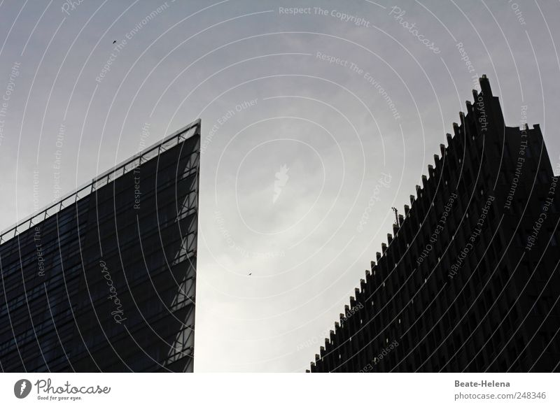 Eine Stadt mit Ecken und Kanten Himmel Sommer Ferien & Urlaub & Reisen Haus Umwelt Berlin Gebäude Glas Fassade Ausflug Beton Hochhaus Dach Bauwerk Skyline