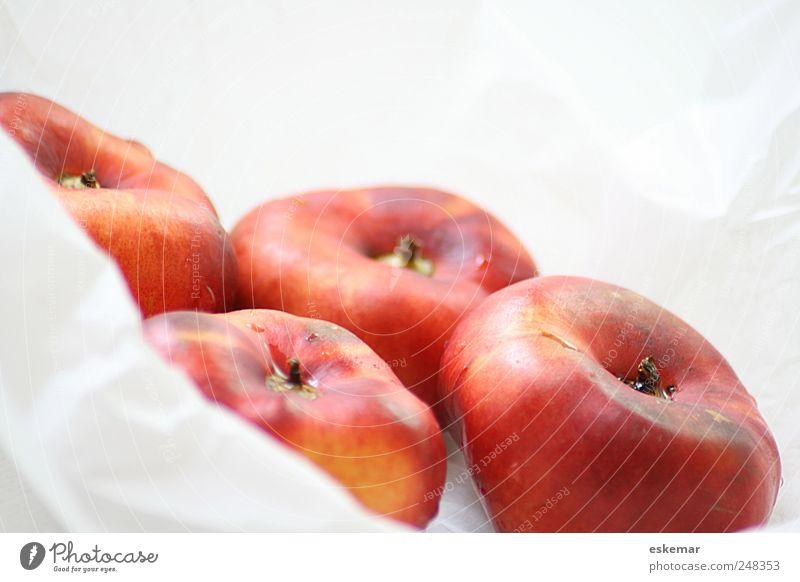 Bergnektarinen weiß rot Gesundheit orange Frucht Lebensmittel mehrere nass frisch Ernährung ästhetisch süß viele 4 genießen lecker