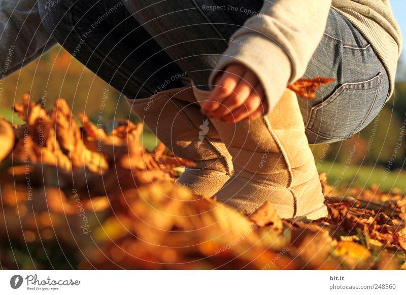 den Herbst packen Beine Fuß 1 Mensch Umwelt Natur Pflanze Klima Schönes Wetter Wiese Jeanshose Stiefel hocken knien Spielen braun Freude Lebensfreude Aktion