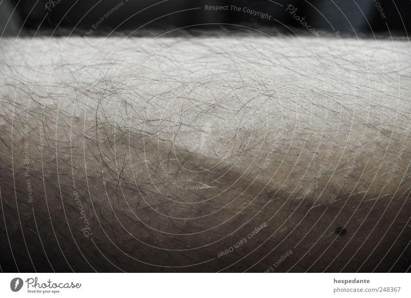 Menschlicher Urwald schön Kosmetik Epilieren Rasieren Haarentfernung Enthaarung Gefäße Friseur Depiladora maskulin Haare & Frisuren Beine Leberfleck kurzhaarig